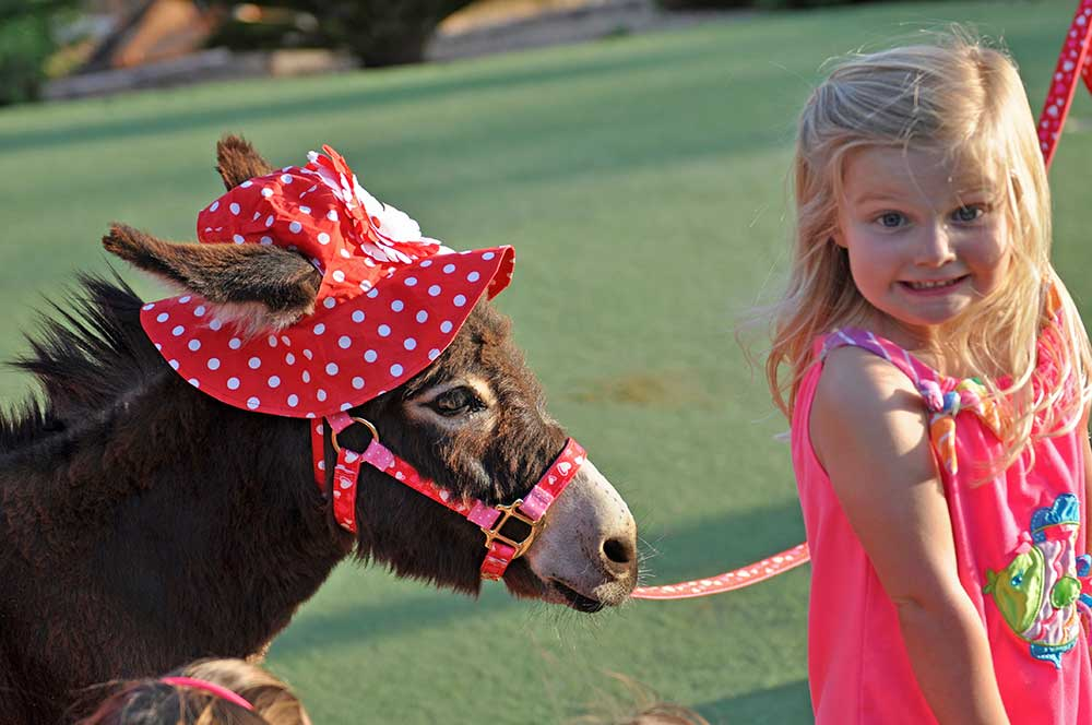 Little girl in red with Fantasy Donkey in red hat