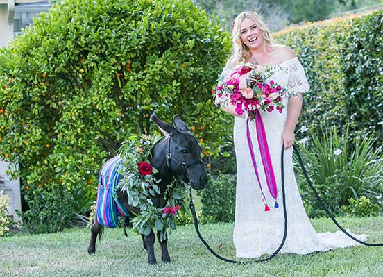 Fiesta Fantasy Donkey and Bride