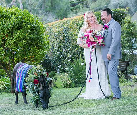 Fiesta Fantasy Donkey Wedding