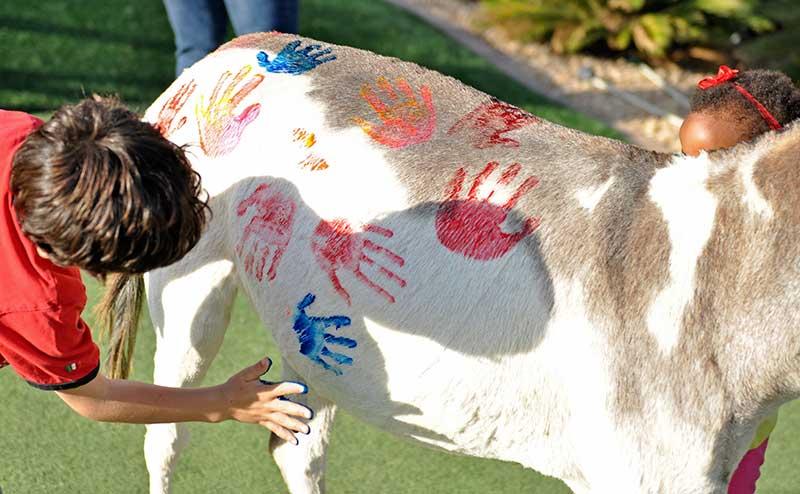 Painted Fantasy Donkey