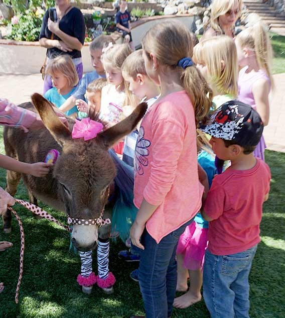 Children petting a Fantasy Donkey